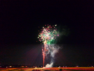 チューリップと花火。